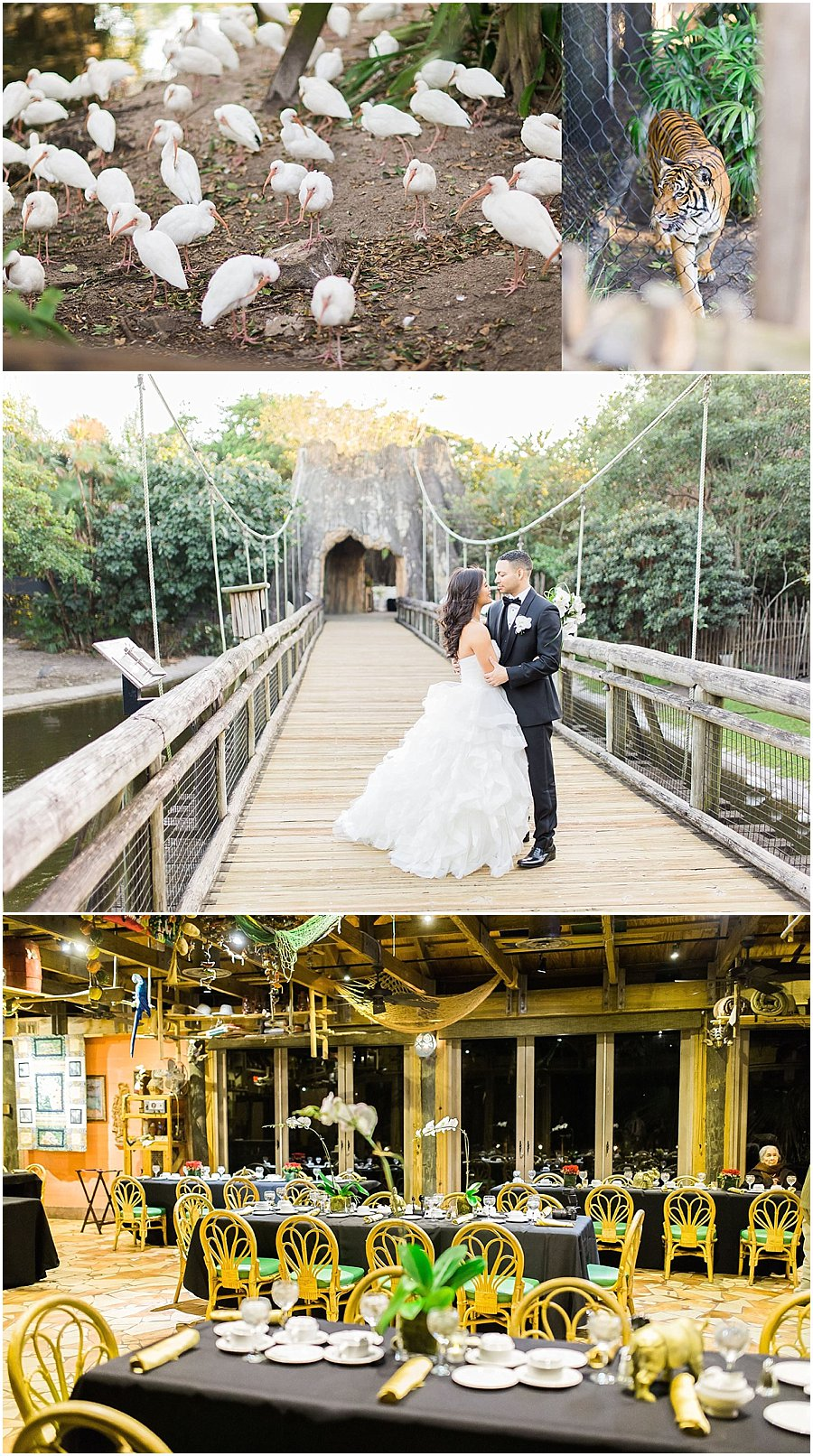 Unique Wedding Venue_Palm Beach Zoo